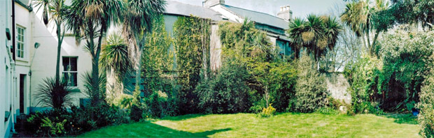 City garden before redesign by garden designer Peter O'Brien