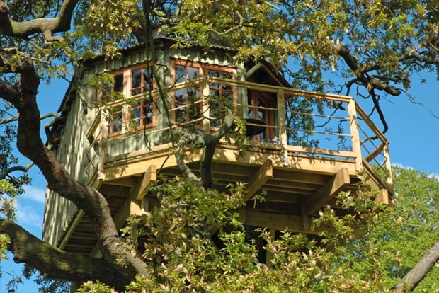 The bespoke treehouse nestled in mature oak