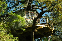 Bespoke treehouse design for children and adults by Plan Eden.