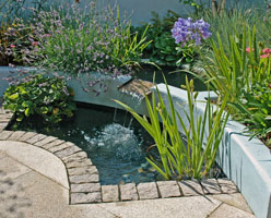 The split level cascade water feature provides sound and movement within this small courtyard.